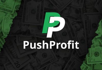 Партнерская программа PushProfit